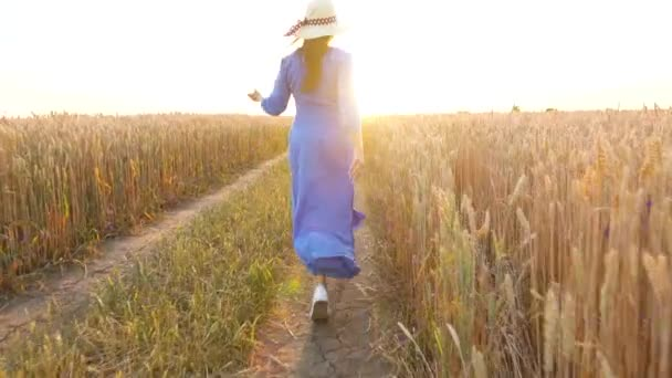 Beautiful woman in a blue dress and hat runs through a wheat field at sunset. Freedom concept. Wheat field in sunset. Slow motion