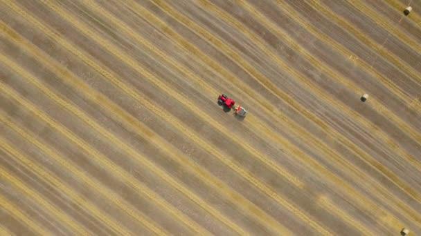 A bórbés kerek bálába feldolgozott. Piros traktor működik a területen