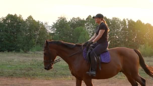 Žena jezdícího na koni tryskem při západu slunce. Jízda na koni v pomalém pohybu.