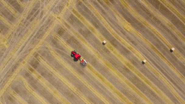 Aerial view of haymaking processed into round bales. Red tractor works in the field
