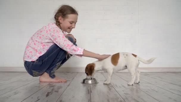 Kind füttert einen Hund aus einer Schüssel