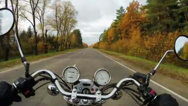 4K. Motorcycle riding on the golden forested road, wide point of view of rider. Classic cruiser/chopper forever!