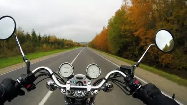 4K. Motorcycle riding on the beautiful forested road, wide point of view of rider. Classic cruiser/chopper forever!