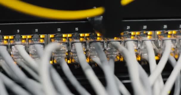Lichter und Verbindungen auf Netzwerk-Server. geladenen Netzwerk Medien-Konverter und Ethernet-switches