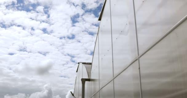 Velký skleník s prosklenými stěnami, sedlová střecha, základy, zahradní postel. zahradnické konzervatoř pro pěstování zeleniny a květin. Klasické pěstování Skleníkové zahradnictví. Slunečný den