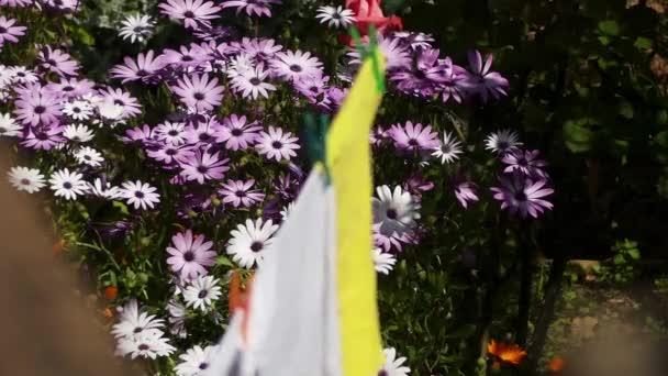 Ložní prádlo, které se suší po umytí na pozadí zahradních květin
