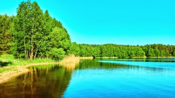 Summer landscape of small river with wooded banks.