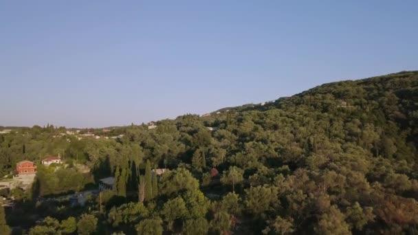 Blick auf die Waldlandschaft aus der Drohne