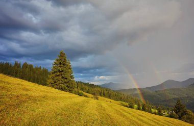Rainbow and sunshine after rain in mountain valley.