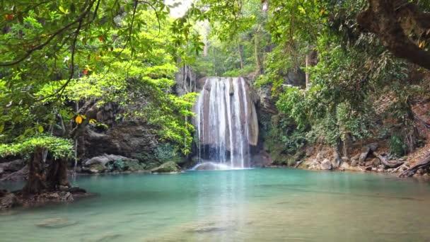 Vodopád vodopád kaskáda u stromu v zeleném lese se zvukovým zvukem klidné padající vody. Video klip 4K