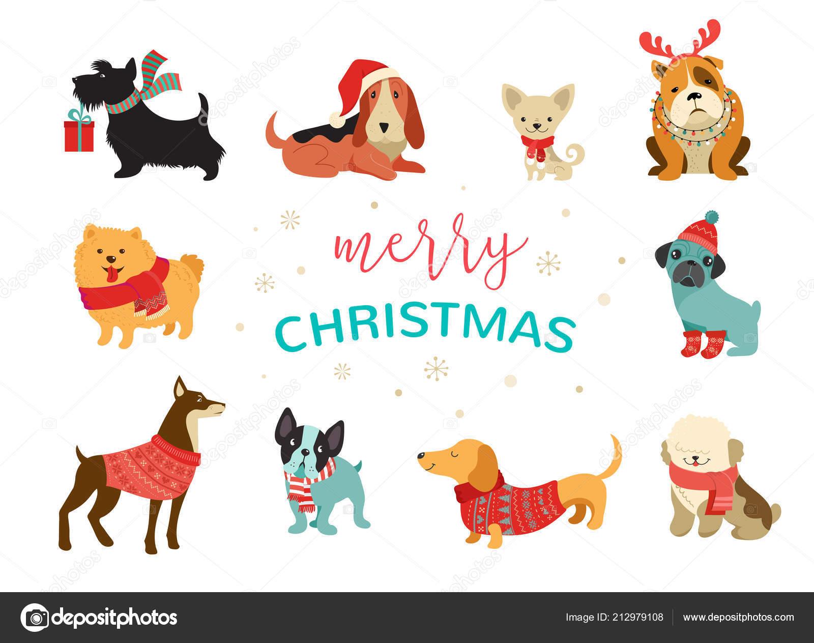 Colección de perros de Navidad, ilustraciones de feliz Navidad de ...