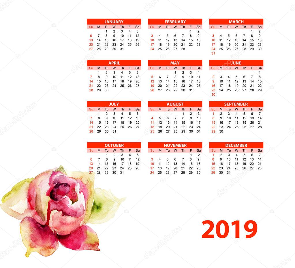 Template for calendar 2019 with beautiful Peony flower, Watercolor paintin