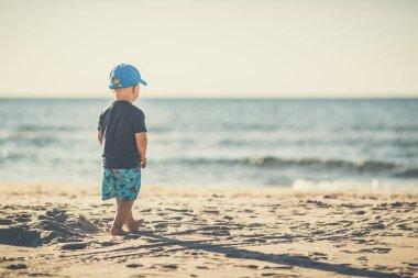 Toddler boy walking on a sunny beach