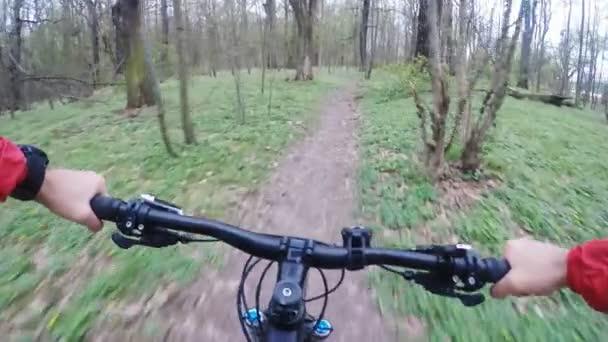 Pomalý pohyb Jízda na kole v zeleném lese, horské kolo první osobní perspektiva Pov. Léto mezi stromy. Gimbal stabilizovaný výstřel s Gopro Hero5 černé 120 fps.