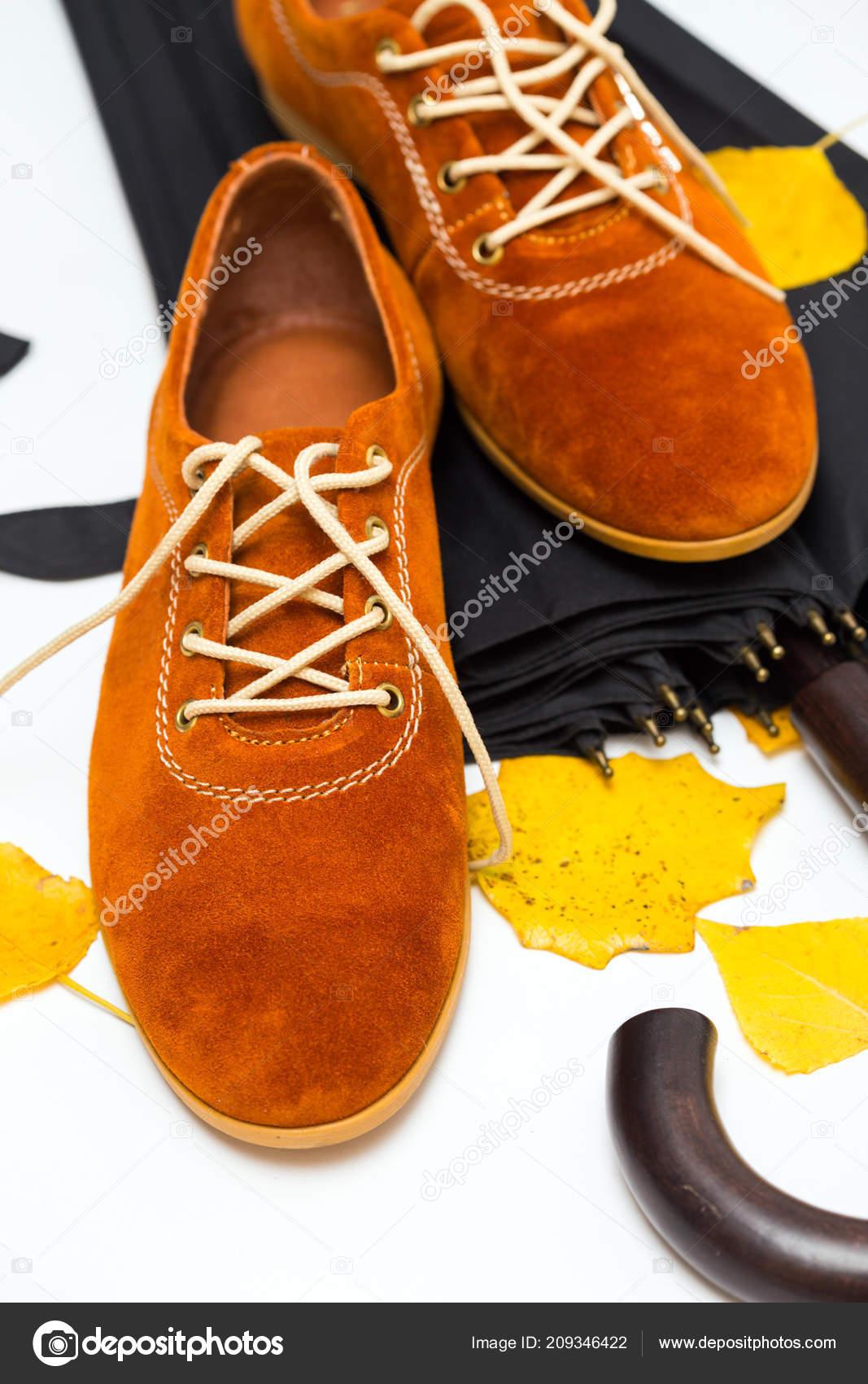 9a5d2962a309 Όμορφα Γυναικεία Παπούτσια Της Κορδόνια Ένα Λευκό Φόντο Και Φθινόπωρο —  Φωτογραφία Αρχείου