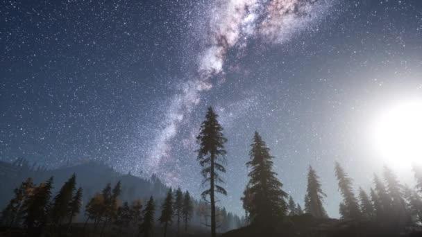 Hvězdy Mléčné dráhy s nad lesní stromy borovice