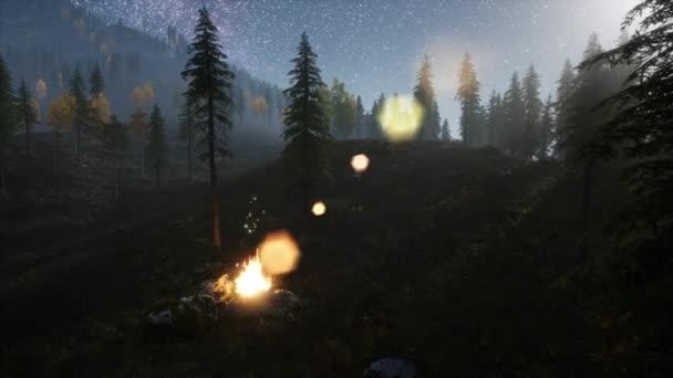 oheň na hoře rorest v noci