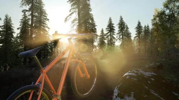 kerékpár, hegyi erdő naplementekor