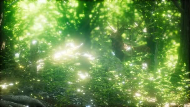 Zöld erdőben nagy gímszarvas