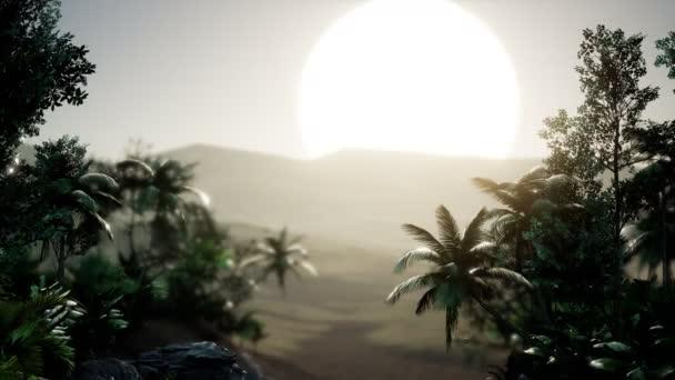 Coco-Palmen tropische Landschaft
