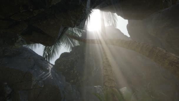 Große Palmen in Steinhöhle mit Sonnenstrahlen