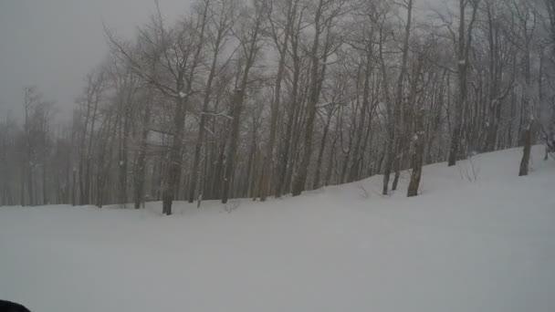GoPro hrudní držák lyžař extrémní v lese lyžování na čerstvý Prachový sníh v zimě