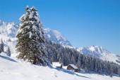 Winter in den Schweizer Alpen, Schweiz