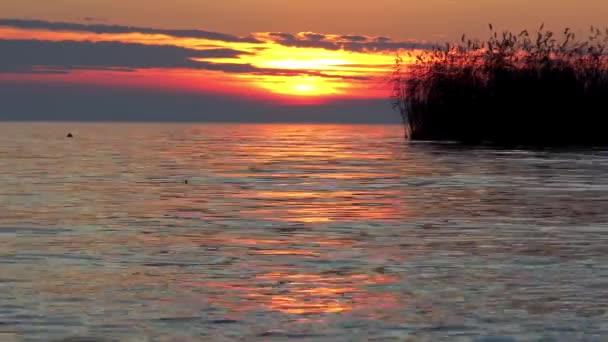 Gyönyörű naplemente fény Balaton Magyarország felett