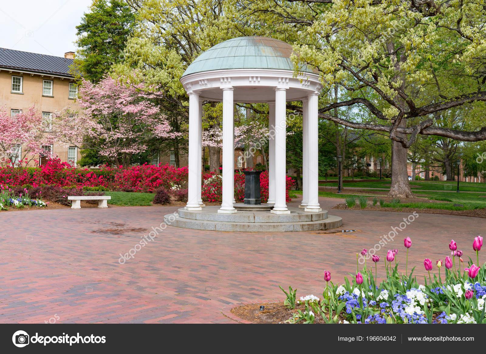 Flowers Bloom Spring Old Well Rotunda University North Carolina