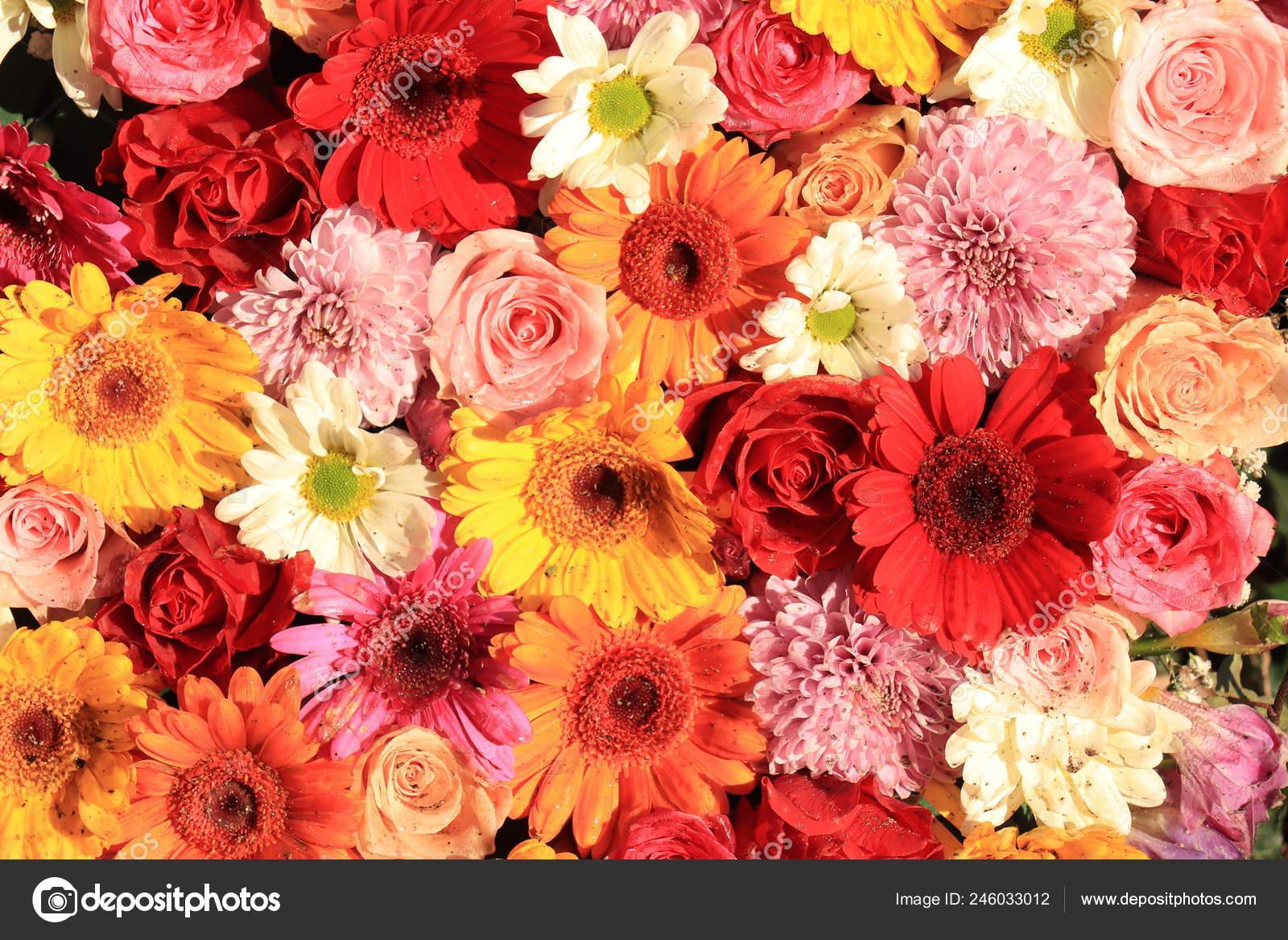 Mixed Flower Arrangement Wedding Roses Gerberas Pink Yellow Red Stock Photo C Portosabbia 246033012