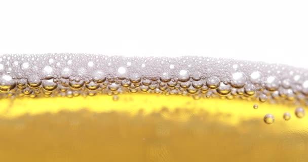 Egy pohár sör közelkép habos-fehér háttér