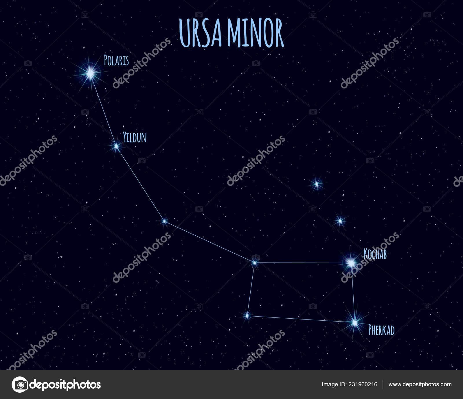 Constellation Petite Ourse Petit Ours Petite Ourse
