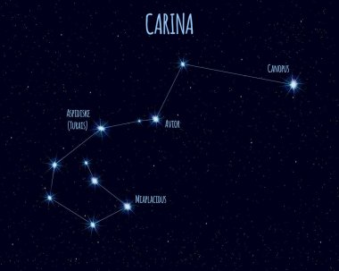 Carina (The Keel) constellation, vector illustration with the names of basic stars against the starry sky