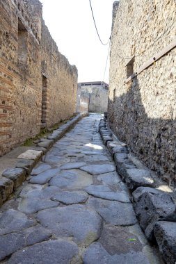 The city of Pompeii buried under a layer of ash by the volcano M