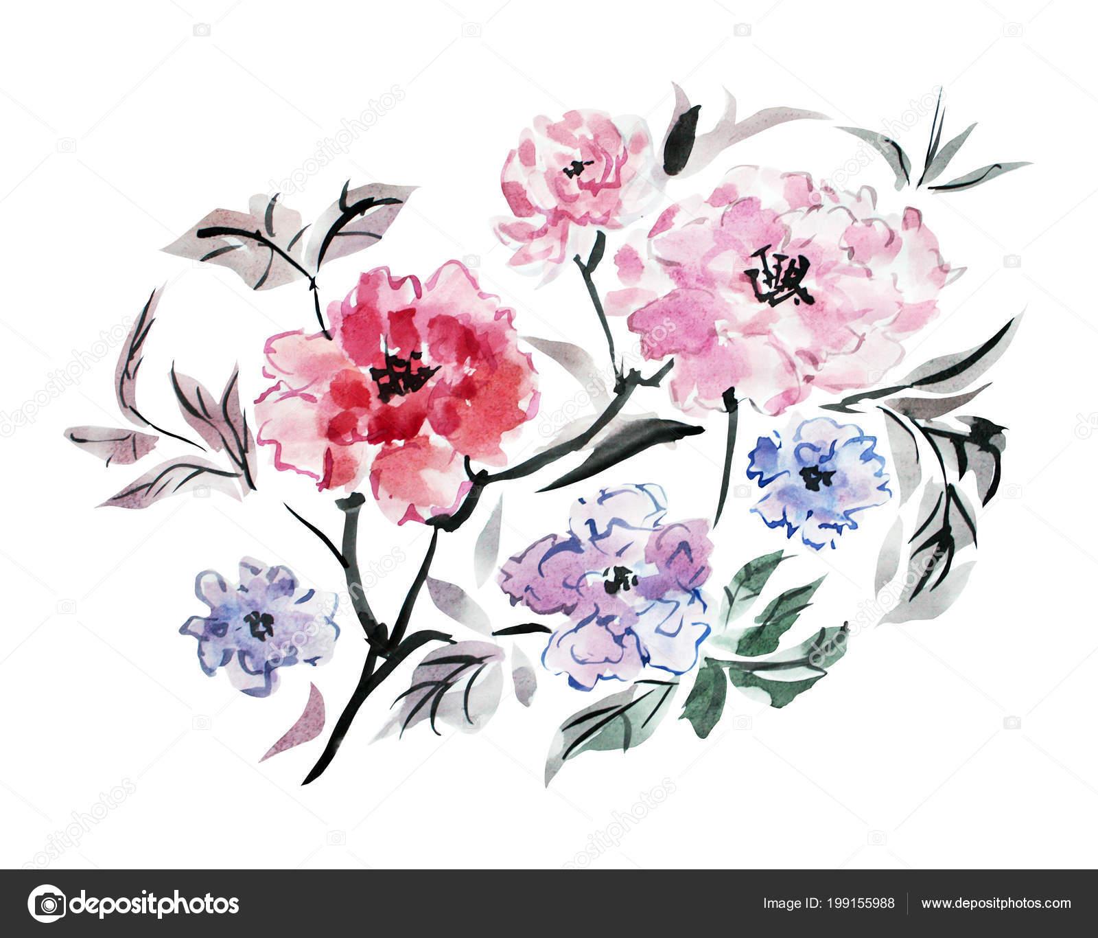 Ozdobny Piwonia Akwarela Kwiaty Clipart Elementy Projektu