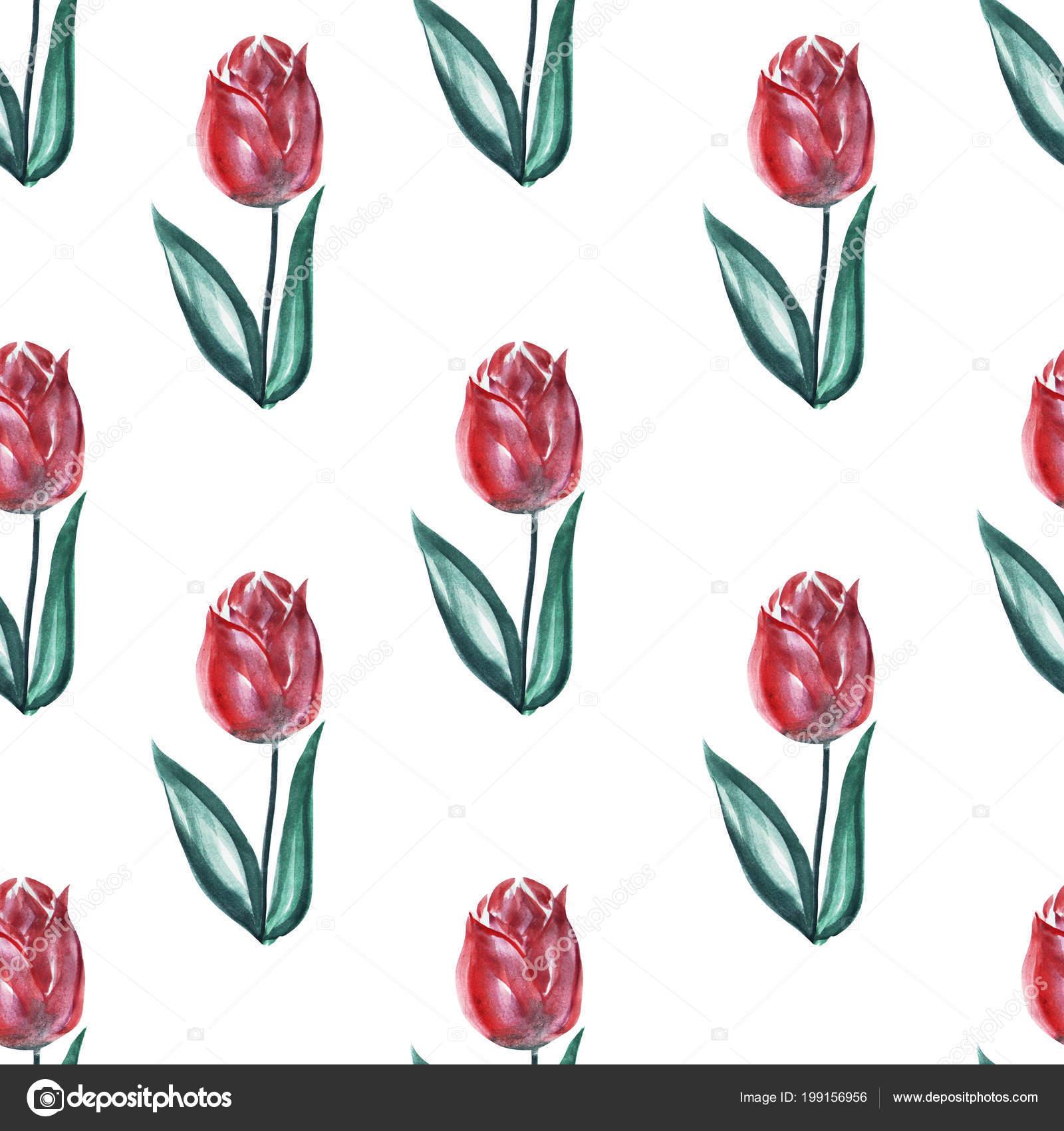 Sulu Boya Lale çiçek Tasarım öğeleri Ile Zarif Seamless Modeli