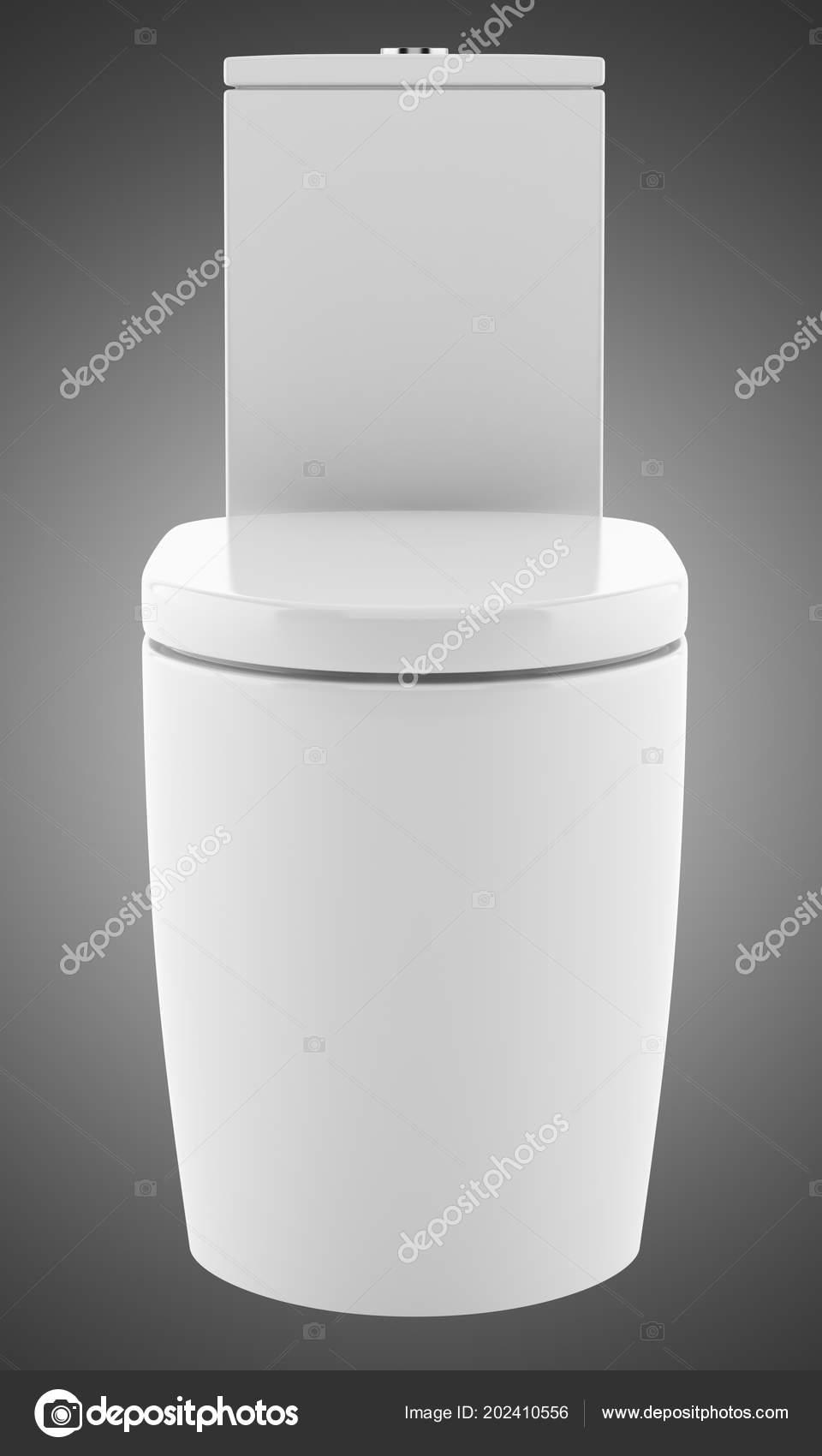 Superb Modern Standing Toilet Bowl Isolated Gray Background Creativecarmelina Interior Chair Design Creativecarmelinacom