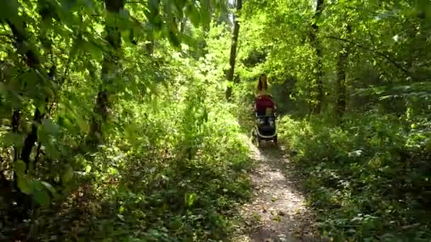 Woman with baby and stroller walking in forest