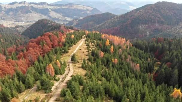 Letecký pohled na podzimní hory. Přelet červené, oranžové a zelené stromy. Podzimní koncept.