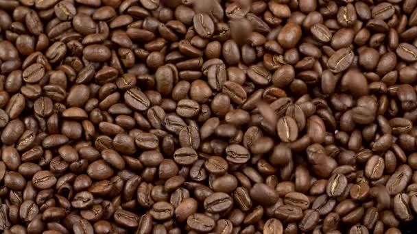 Falling coffee beans. Slow motion shot