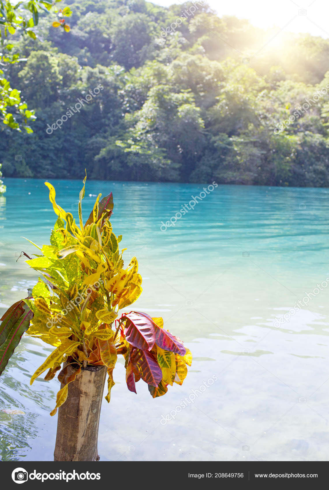 Blue Lagoon Jamaica Stock Photo C Kkulikov 208649756