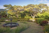 Fotografie park with fountains in Mauritius