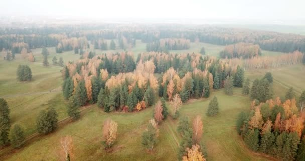 Aerial view of autumn forest. Fall landscape with red, yellow and green trees and fields with a mowed grass in sunny day