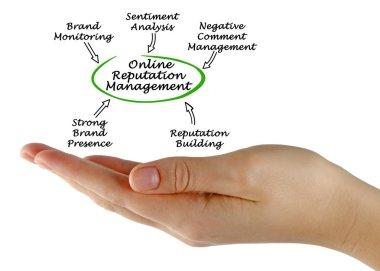 Presenting Online Reputation Management