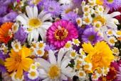 háttérként a különböző nyári virágok csokor