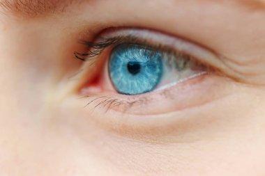 close-up photo of blue eye