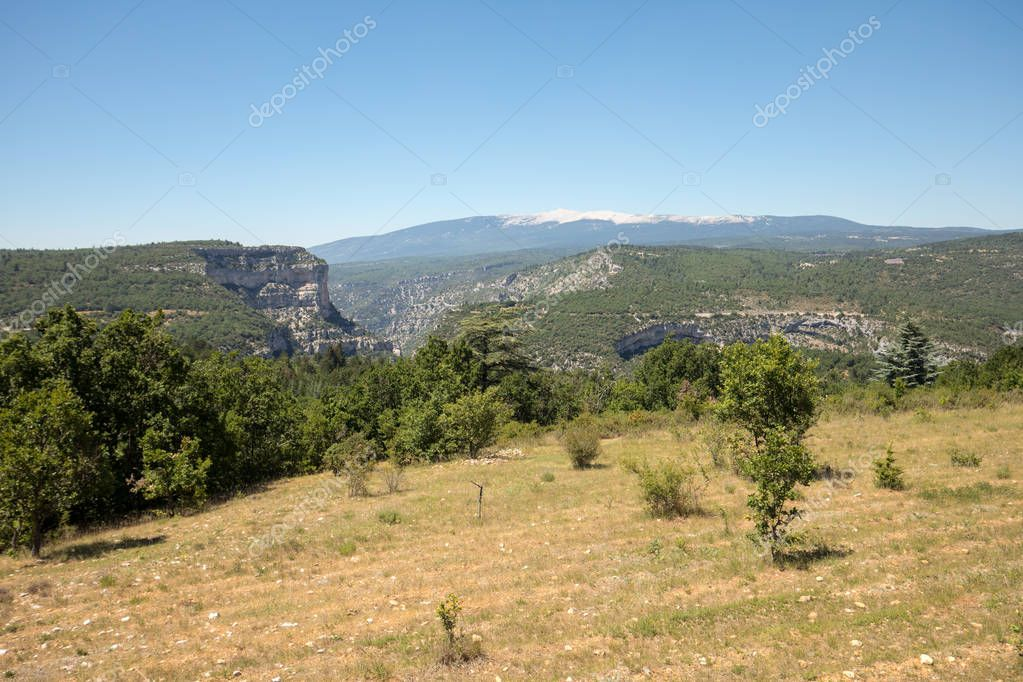 Landscape in the department of Vaucluse in Provence and the Mont Ventoux in the background. France