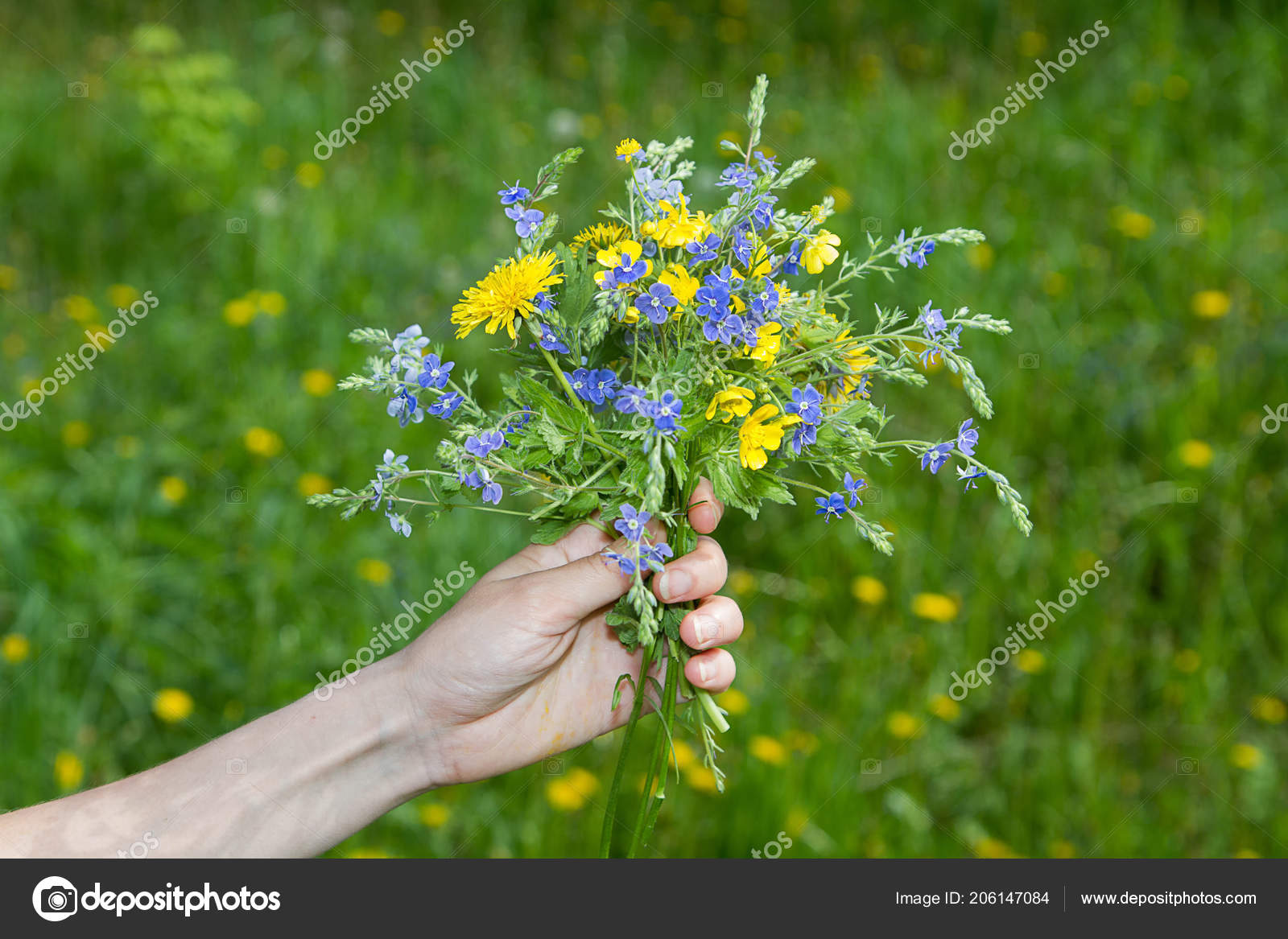 Bouquet Bright Beautiful Flowers Girl Hand Stock Photo