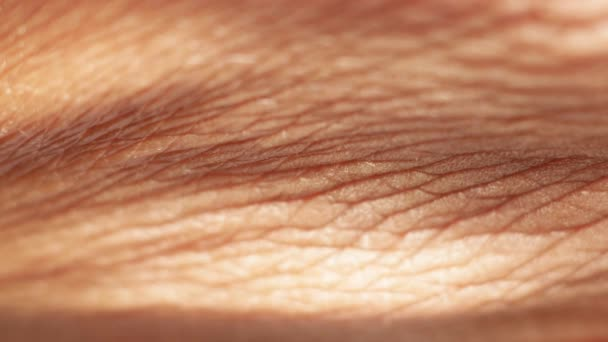 Nahaufnahme einer behaarten Haut