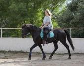 školení jsou ženy rider a její černý kůň